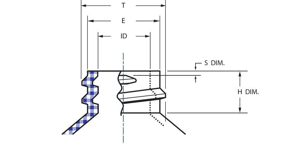Bottle Neck Dimensions